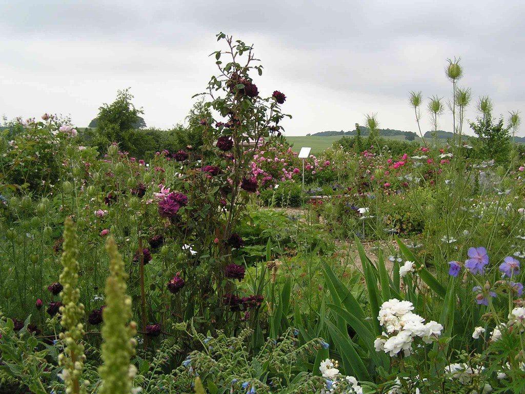 Garten gestalten mit wenig Geld: Beete