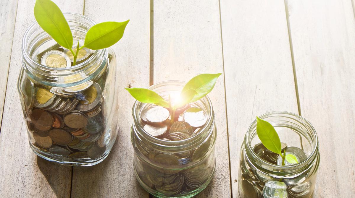 Ökologischer Finanzmarkt