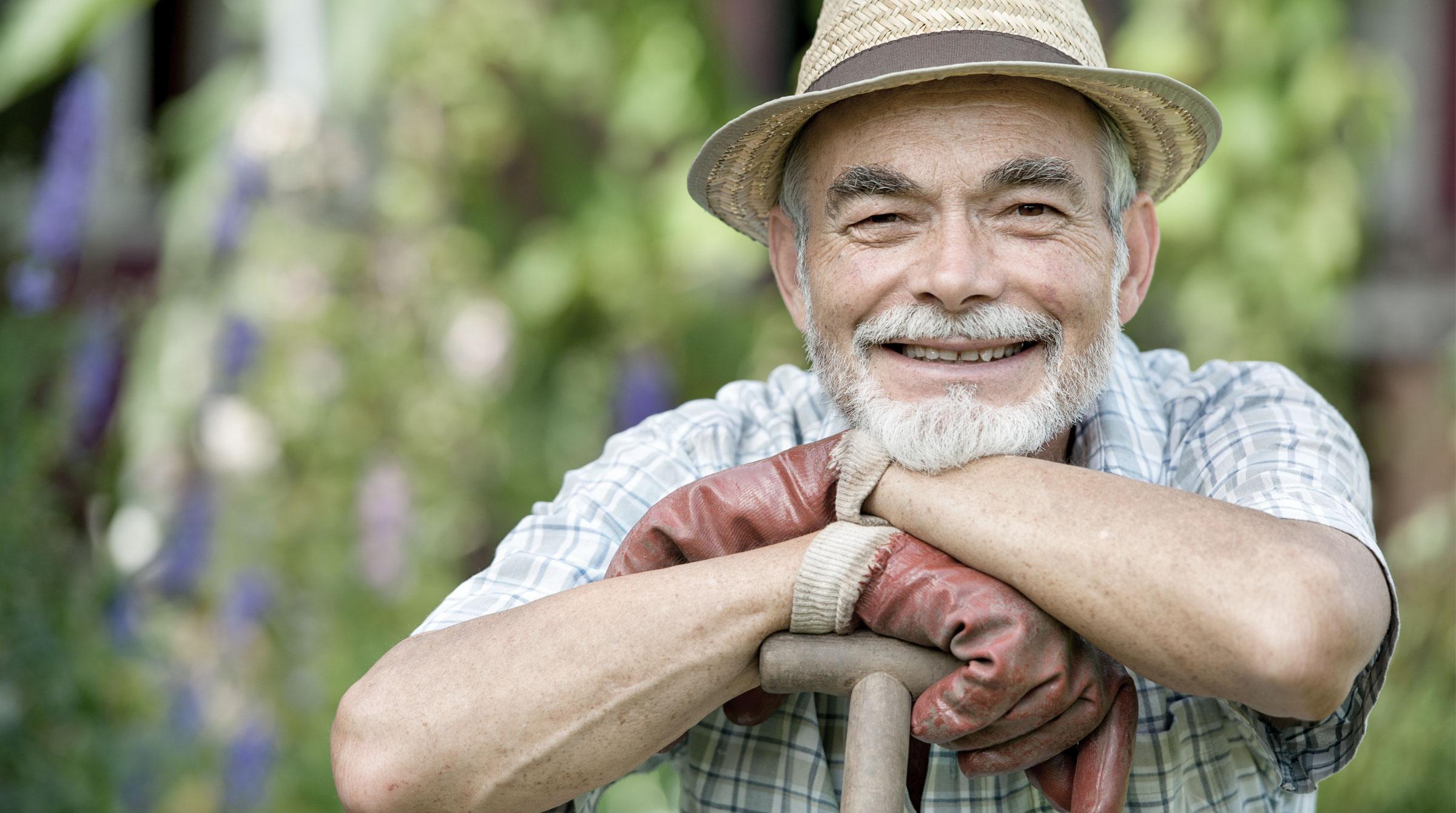 Alterseinkünftegesetz