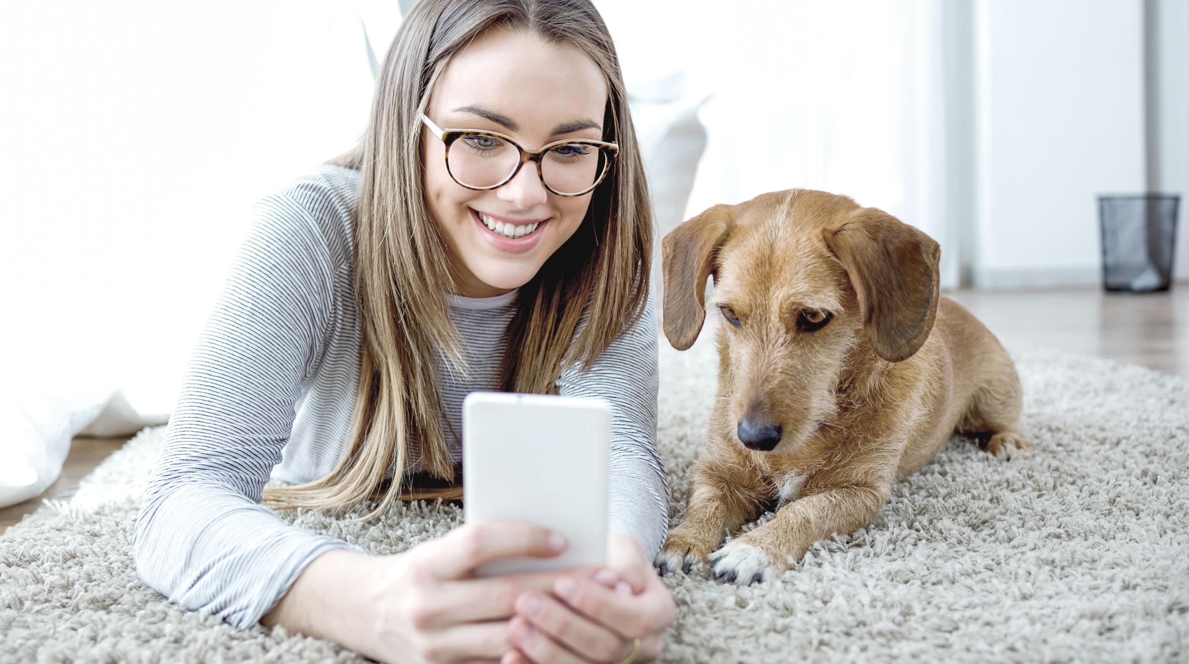 Teaser Ratgeber Tierhalterhaftpflicht